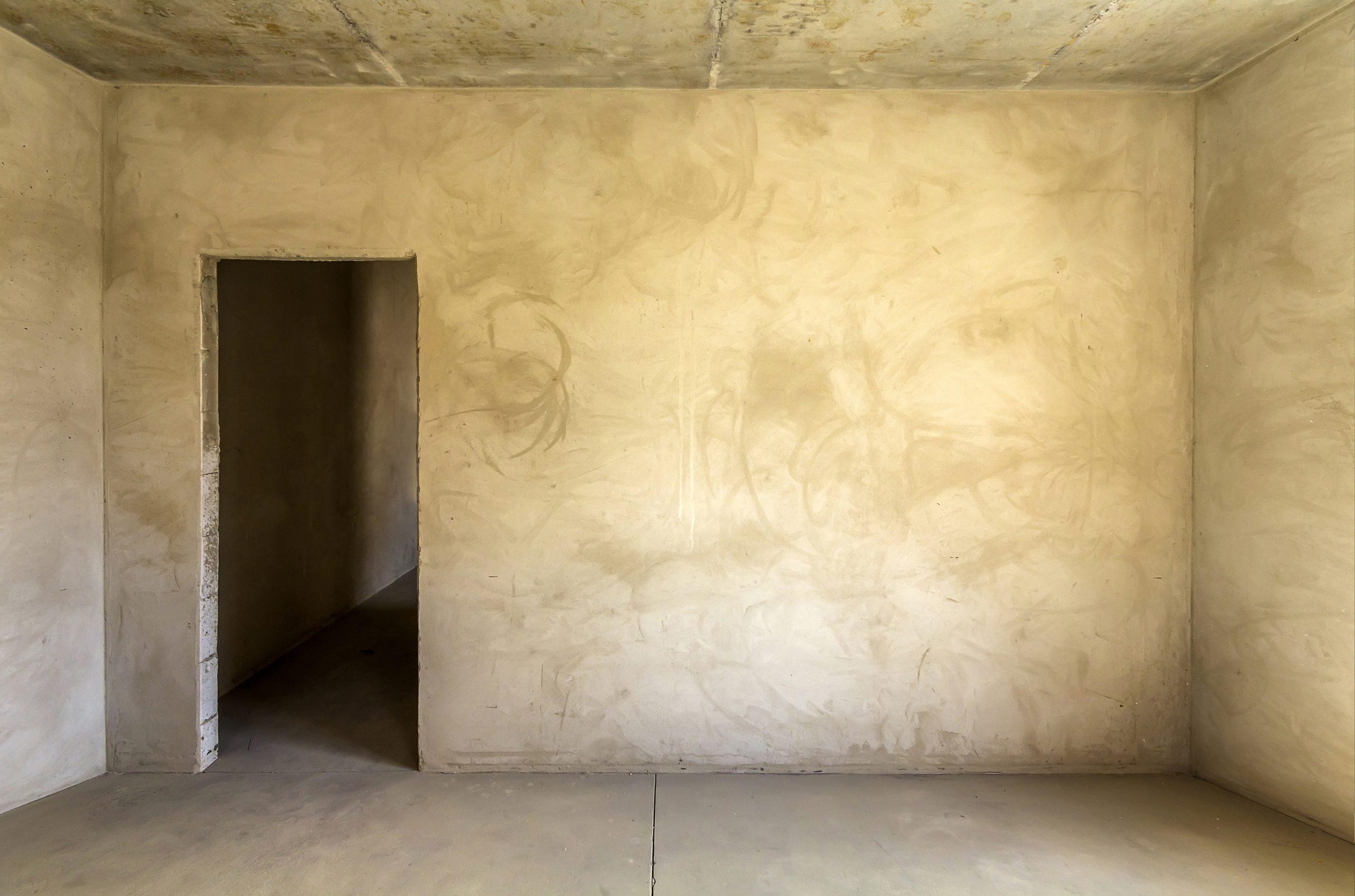 rénovation sur mur avant - viranet